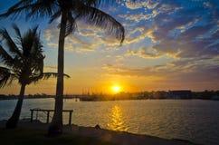 Sonnenuntergang über Jachthafen mit palmtree Lizenzfreie Stockfotografie