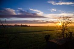 Sonnenuntergang über landwirtschaftlichem grünem Feld - August 2016 - Italien, Bolo Lizenzfreie Stockbilder