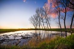 Sonnenuntergang über landwirtschaftlichem grünem Feld - August 2016 - Italien, Bolo Lizenzfreie Stockfotos