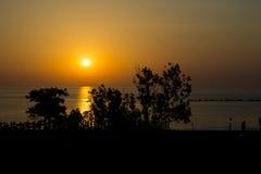 Sonnenuntergang über Meerwasser mit dunklen Bäumen und Strand Lizenzfreie Stockfotos