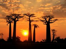 Sonnenuntergang über Morandova lizenzfreie stockfotos