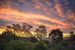 Sonnenuntergang über Redhill Lizenzfreie Stockfotos