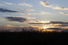Sonnenuntergang über Roggen Lizenzfreie Stockfotografie