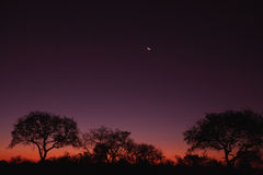 Sonnenuntergang über Sabi stockfotos