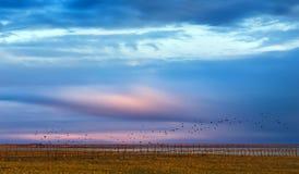 Sonnenuntergang über See Lizenzfreie Stockfotos