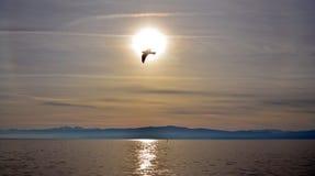 Sonnenuntergang über See ohrid, Macedonia stockfoto