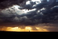 Sonnenuntergang über Serengeti lizenzfreie stockbilder