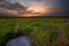 Sonnenuntergang über Sumpfland Lizenzfreies Stockfoto