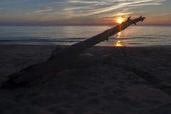Sonnenuntergang über Treibholz Lizenzfreies Stockbild