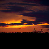 Sonnenuntergang über Wald Stockfoto
