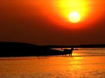 Sonnenuntergang-Überfahrt Lizenzfreie Stockfotos