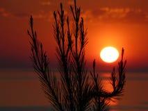 Sonnenuntergang 2 Stockbild