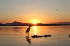 Sonnenuntergang stockfotografie