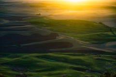 Sonnenuntergang-Ansicht von Steptoe-Butte Stockbild
