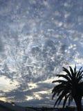 Sonnenuntergang in Auckland Neuseeland lizenzfreie stockfotografie
