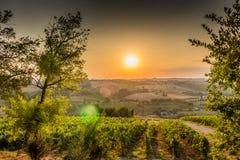 Sonnenuntergang auf üppigem Ackerland in der hügeligen Landschaft Stockbild
