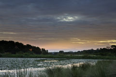 Sonnenuntergang auf afrikanischem Teich Stockbilder