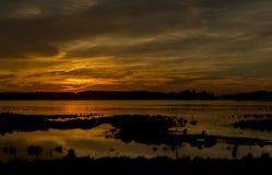 Sonnenuntergang auf Antrieb der wild lebenden Tiere Lizenzfreie Stockfotografie