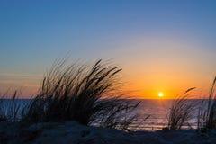 Sonnenuntergang auf Atlantik, Strandhaferschattenbild in Frankreich stockfotos