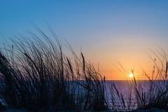 Sonnenuntergang auf Atlantik, Strandhaferschattenbild in Lacanau Frankreich Stockfotografie