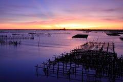 Sonnenuntergang auf Austerenzahnstange Stockbilder
