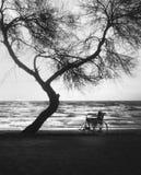Sonnenuntergang auf dem behinderten Rollstuhl des Strandes Stockfotografie