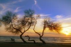 Sonnenuntergang auf dem behinderten Rollstuhl des Strandes Lizenzfreies Stockfoto