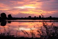 Sonnenuntergang auf dem Feld Stockbild