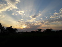 Sonnenuntergang auf dem Feld Lizenzfreie Stockfotografie