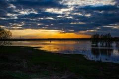 Sonnenuntergang auf dem Fluss mit drei Bäumen auf Desna-Fluss im Frühjahr, Ukraine Stockbild
