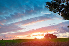 Sonnenuntergang auf dem Gebiet im Sommer Lizenzfreies Stockbild