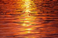 Sonnenuntergang auf dem See Stockfotografie
