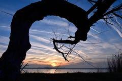 Sonnenuntergang auf dem See Stockfotos
