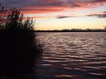 Sonnenuntergang auf dem Seebewölkten himmel und -schilfen lizenzfreie stockfotografie