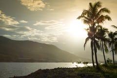 Sonnenuntergang auf dem Seeufer mit Palmen Stockfotos