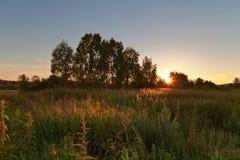 Sonnenuntergang auf dem Sommergebiet Stockfotos