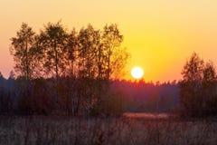 Sonnenuntergang auf dem Sommergebiet Lizenzfreie Stockfotos
