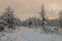 Sonnenuntergang auf den des Urals Bergen Stockfotografie