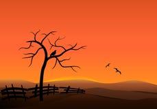 Sonnenuntergang auf den Hügeln Lizenzfreie Stockfotos