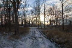 Sonnenuntergang auf den Ruinen der Standorte der Luftverteidigung S-75 u. x22; Dvina& x22; lizenzfreies stockfoto