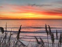 Sonnenuntergang auf den 101, San Diego, Ca lizenzfreies stockfoto