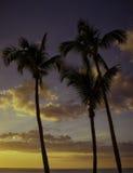 Sonnenuntergang auf der Golf-Küste Stockbild