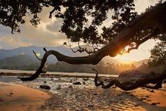Sonnenuntergang auf der Insel von Tioman Lizenzfreies Stockbild