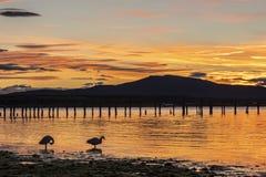 Sonnenuntergang auf der K?ste von Puerto Natales lizenzfreies stockbild