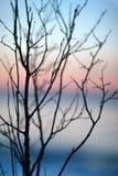 Sonnenuntergang auf der Ostsee im Winter Stockbild