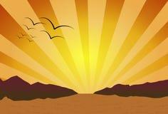 Sonnenuntergang auf der Wüste stockfoto