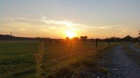 Sonnenuntergang auf der Weide stockfotos