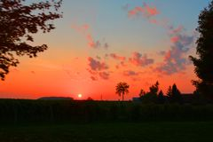 Sonnenuntergang auf der Weinkellerei stockbild
