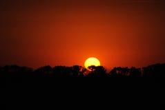 Sonnenuntergang auf einem Hintergrund des roten Himmels stockfotografie