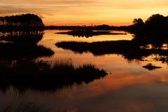 Sonnenuntergang auf dem Sumpf Lizenzfreie Stockfotografie